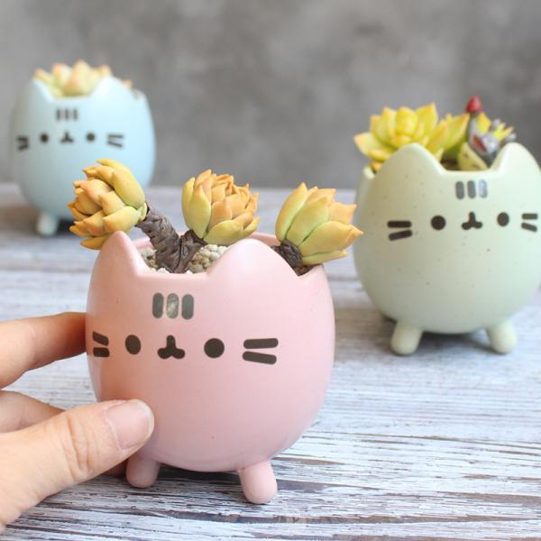 Cute Cat Ceramics Planters Vase Anime Decoration Cute Cartoon Creative Mini Flowerpot